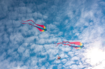 Panel Szklany Niebo Colourful kites