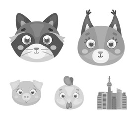 Protein, raccoon, chicken, pig. Animal's muzzle set collection icons in monochrome style vector symbol stock illustration web.