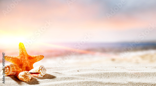Deurstickers Zalm shell on santa and ocean landscape