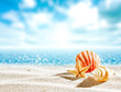 Shell on sand and free space for your decoration.