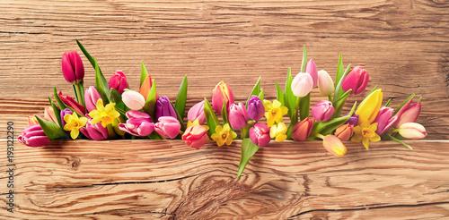 Fototapeta Fresh spring flowers on an Easter banner