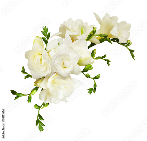 White Freesia Flowers In A Beautiful Composition Buy This Stock