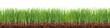 canvas print picture - Wiese,Rasen,Gras mit Erde im Querschnitt