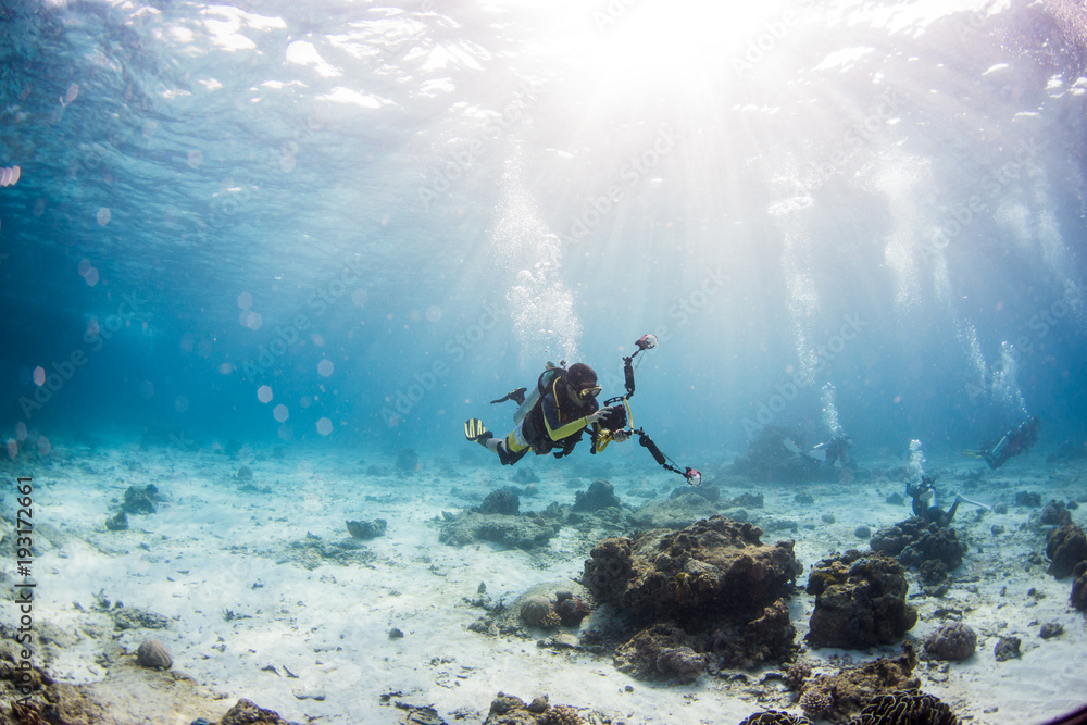 Fototapeta Scuba diving on coral reef underwater with rays light background.