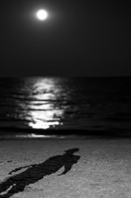 Shadow Of A Man On The Beach Of The Sea, Moonlight. Night Moon.