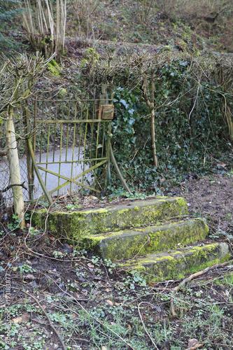 Altes Rostiges Gartentor, Tür, Mit Einer Stein Treppe Im Garten