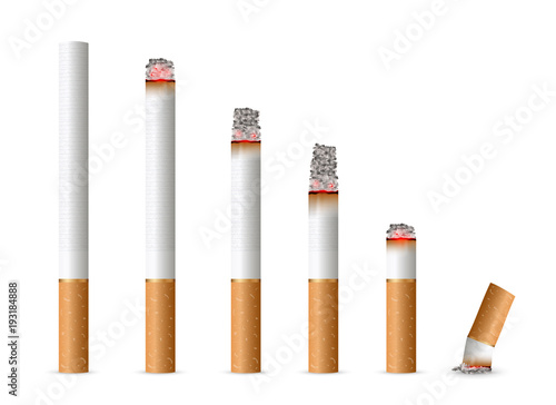 Fotografija  Creative vector illustration of realistic cigarette set isolated on transparent background