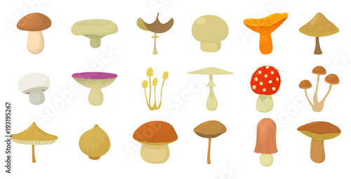 Fotografia Mushroom icon set, cartoon style