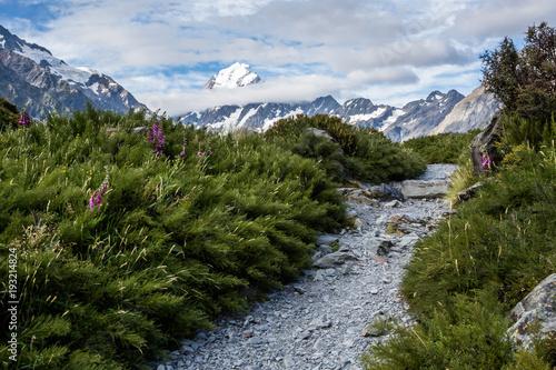 Fotografie, Obraz  Trail toward Mt Cook, highest peak in New Zealand