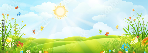 Summer or spring sunny meadow with green grass and flowers