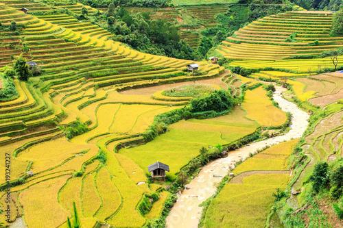 Fotobehang Rijstvelden Terrace rice field at Mu Cang Jai, Vietnam.
