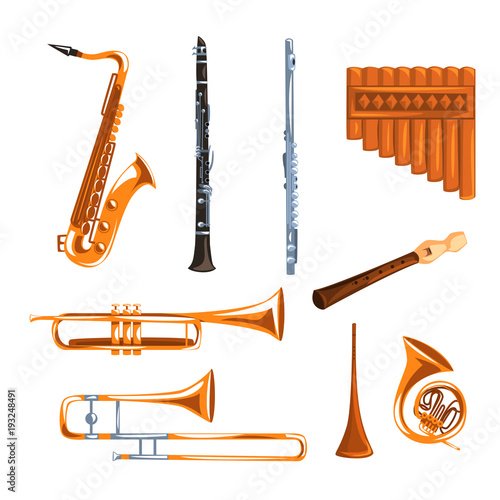 Musical wind instruments set, saxophone, clarinet, trumpet, trombone, tuba, pan Canvas Print
