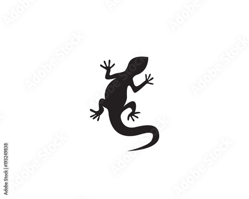 Photo Lizard vector icon logo and symbols template