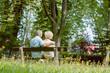 Romantisches Bestager Paar sitzt auf der Bank im Sommer