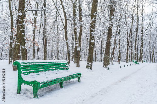 Tuinposter Lichtblauw An empty bench in a winter park. An empty wooden bench in the park, all around in the snow. Snow-covered alley with empty benches.