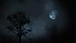 Leinwandbild Motiv Full moon at night rising between evergreen tree forest with clouds 3d illustration