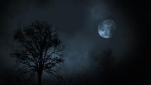 Full Moon At Night Rising Betw...