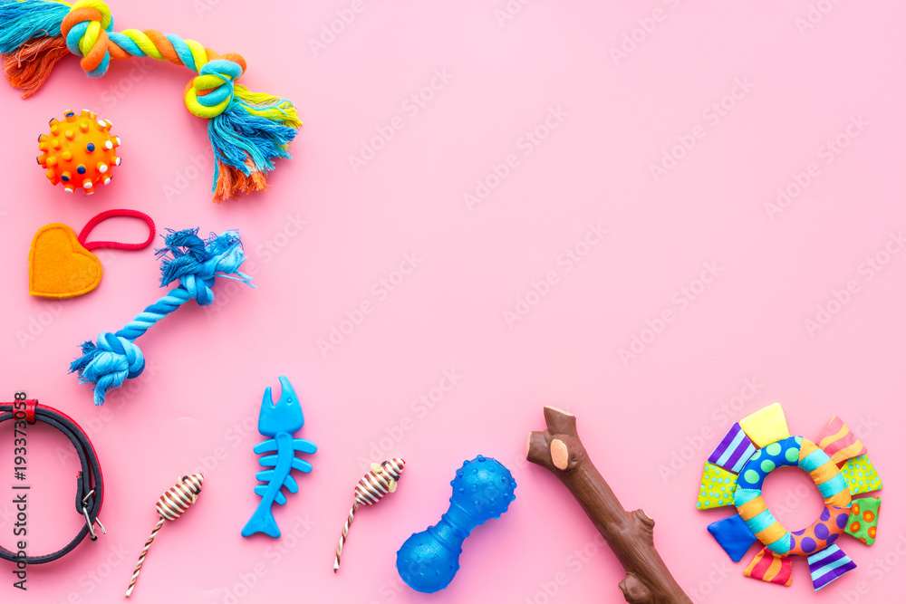 Pet accessories. Toys for cat and dog near collar on pink background top view copy space
