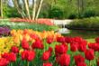 Frühling im Keukenhof in Lisse, Holland
