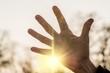 Hand Frau in Sonne