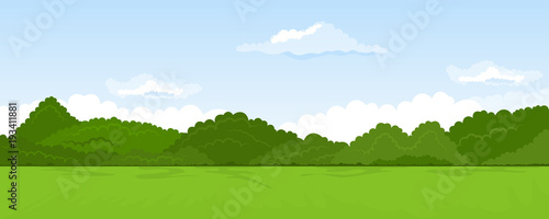 Wall Murals Blue sky Rural summer landscape