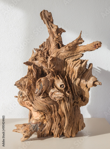 The modern wood decorative sculpture.