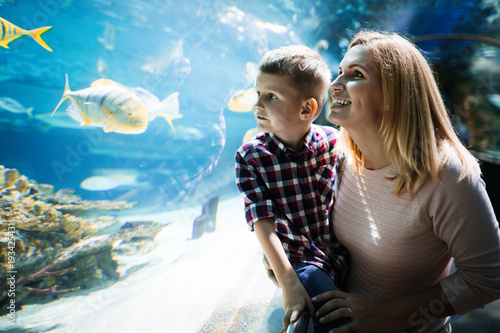 Fotografie, Obraz  Family watchig fishes at a aquarium