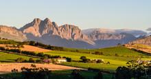 Winelands Beauty