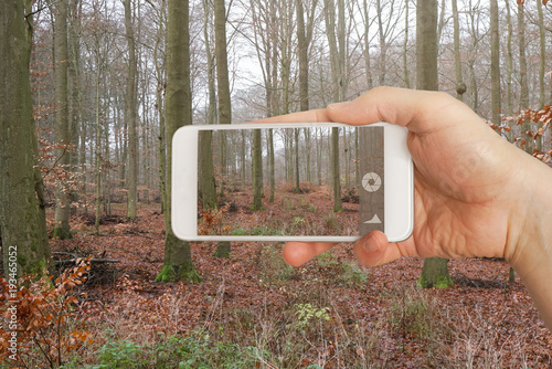Im Wald mit Smartphone fotografieren © OFC Pictures