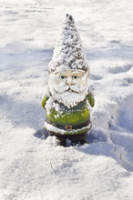 Gnome Covered In Snow/Gnome Closeup In Winter Snow