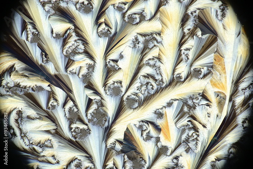 Photo Chemical art, microscope image of crystals of paracetamol
