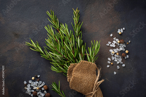Poster Graphic Prints Bunch of fresh rosemary on dark background