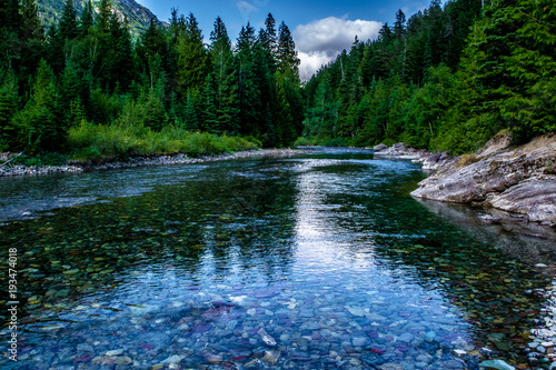 Aluminium Prints Forest river Beautiful Summer Day in Glacier National Park, Montana