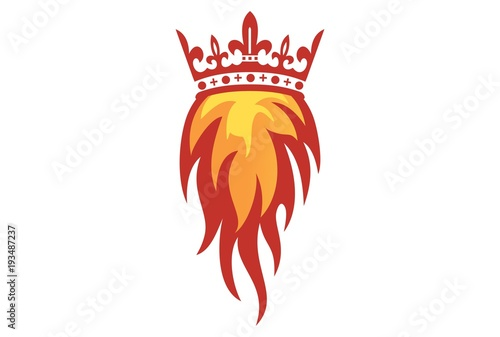 Photo  king fire logo vector