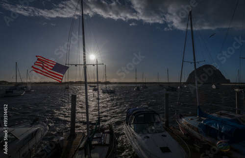 Fotografering Windblown Stars and Stripes