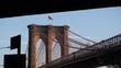 Brooklyn Bridge From Under Overpass