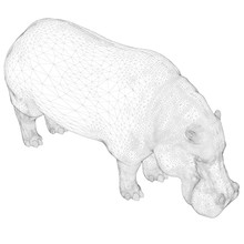 Vector Illustration With Hippo...