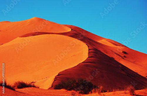 Poster de jardin Desert de sable Sand desert
