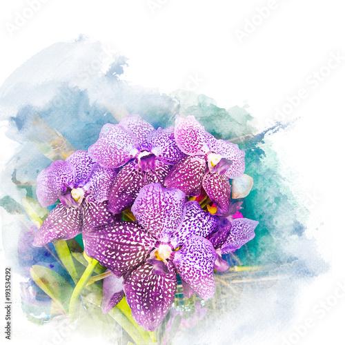 Ilustracja piękna okwitnięcie orchidea.