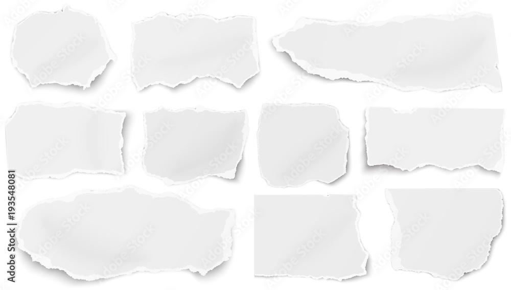 Fototapety, obrazy: Set of paper different tears scraps isolated on white background