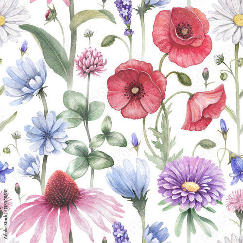 summer-flowers-illustrations-watercolor-seamless-pattern