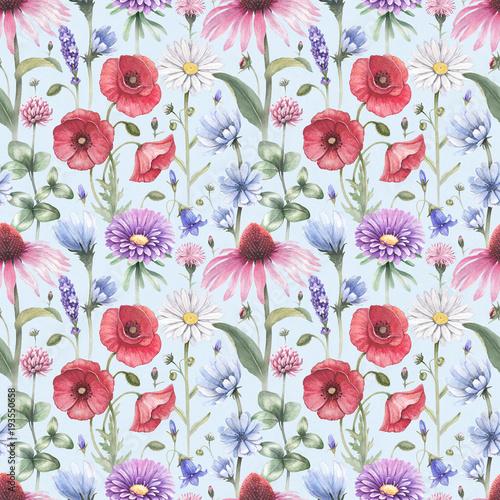 ilustracje-kwiatow-letnich-akwarela-bezszwowe-wzor