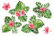 canvas print picture Realistic tropical botanical foliage plants. Set of tropical leaves and flowers: green palm neanta, monstera, hibiscus. Hand painted watercolor illustration isolated on white.
