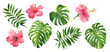 Leinwandbild Motiv Realistic tropical botanical foliage plants. Set of tropical leaves and flowers: green palm neanta, monstera, hibiscus. Hand painted watercolor illustration isolated on white.