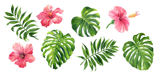 Naklejka Do sypialni Realistic tropical botanical foliage plants. Set of tropical leaves and flowers: green palm neanta, monstera, hibiscus. Hand painted watercolor illustration isolated on white.