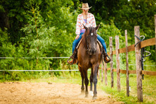 Cowgirl Doing Horse Riding On ...