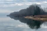 las na brzegu jeziora górskiego - 193582601