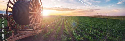 Obraz Bewässerungssystem in der Landwirtschaft - fototapety do salonu