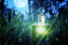 Magical Fairy Dust Potion In B...