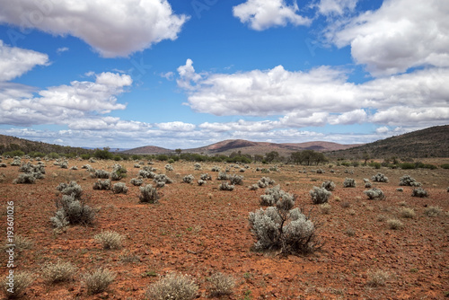 South Australia – Outback desert with scrubs and trees under cloudy sky as panorama